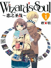 Wizards Soul恋之圣战